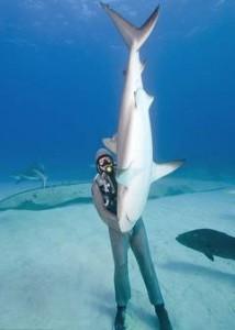 despre-rechini-214×300